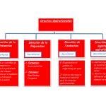 IMG_ZHC_organigramme_DirOp